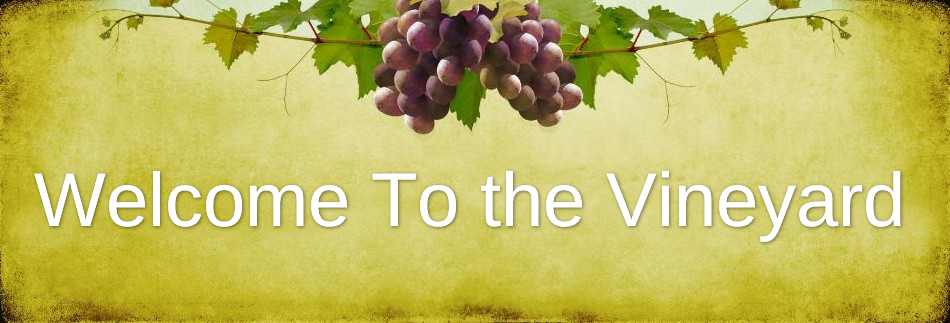 Vine Website Banner